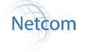 Netcom Systems Group
